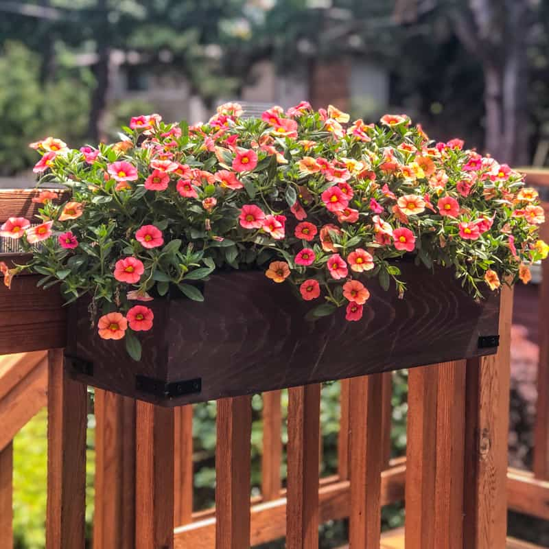 DIY Railing Planters for your Deck or Balcony in 2020 ...